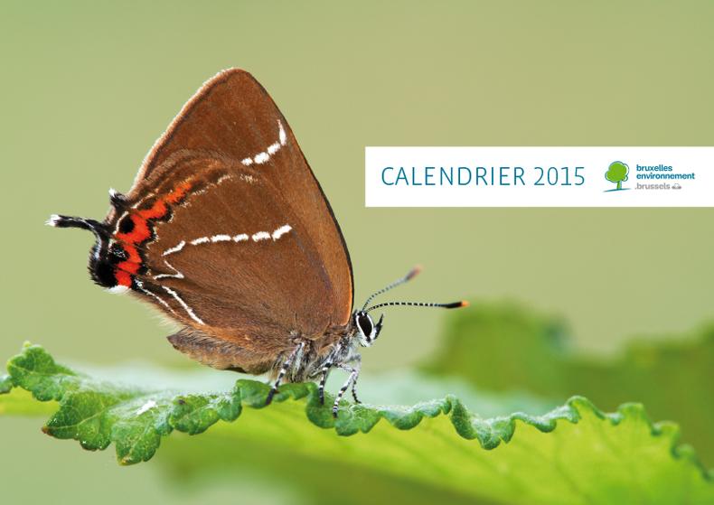 cal2015_fr_bat4-1